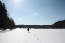 зима3 (3)